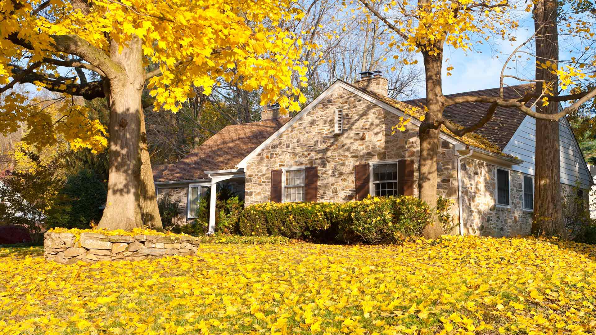 A home in Macomb, MI covered in fall leaves.