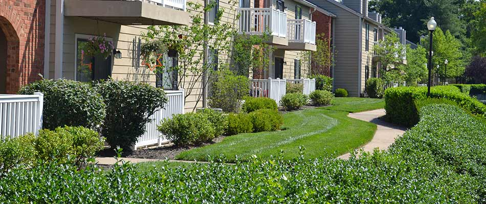 Commercial lawn care and landscaping at a Chesterfield, MI commercial property.