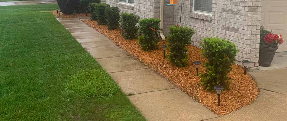 A Chesterfield, MI home with mulch installation in a landscape bed.
